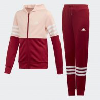 Спортивный костюм Adidas ED4639