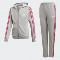 фото Спортивный костюм Adidas Hooded DV0839