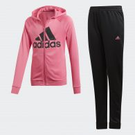 фото Спортивный костюм Adidas Hooded DV0841