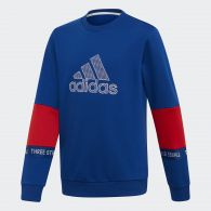 фото Толстовка Adidas Athletics Sport Id Branded DV1695