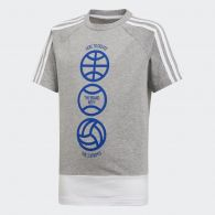 Детская футболка Adidas Athletics Sport Id Colorblock DV1698