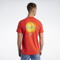 Мужская футболка Reebok Tom and Jerry GK9164
