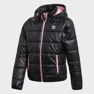 фото Детская куртка Adidas Originals Trefoil Midseason DH3222