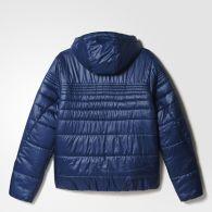 фото Мужская куртка утепленная Adidas Pad Jkt AP9541