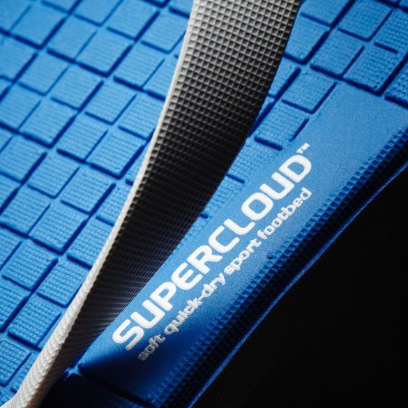 Шлепанцы мужские Adidas Eezay Cloud Foam AQ6120